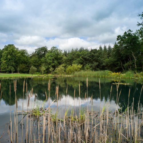 Carnell Estate Lake