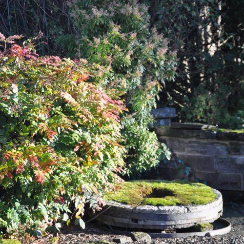 Carnell Estate Garden